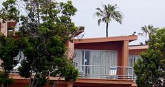 Window_of_vacation_rental